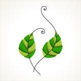 πράσινη φύση φύλλων εικονιδίων οικολογίας οργανική Στοκ φωτογραφία με δικαίωμα ελεύθερης χρήσης
