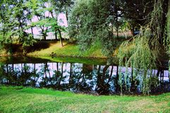 πράσινη φύση στοκ εικόνα με δικαίωμα ελεύθερης χρήσης