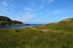 Πράσινη χλόη και μπλε άποψη θάλασσας Στοκ Εικόνα