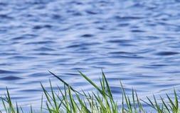 Πράσινη χλόη μπροστά από θολωμένα μπλε κύματα Στοκ φωτογραφία με δικαίωμα ελεύθερης χρήσης