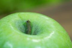 Πράσινη χρωματισμένη λεπτομερής μήλο σύσταση κοντά επάνω στοκ φωτογραφία με δικαίωμα ελεύθερης χρήσης