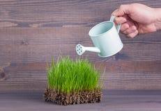 Πράσινη χλόη άνοιξης, σύμβολο της άνοιξης ή καλοκαίρι περίληψη backround για την επιχείρηση και την ανάπτυξη Στοκ φωτογραφία με δικαίωμα ελεύθερης χρήσης