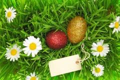 Πράσινη χλόη με τα ακτινοβολώντας αυγά Πάσχας Στοκ εικόνα με δικαίωμα ελεύθερης χρήσης