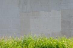 Πράσινη χλόη με τον γκρίζο τοίχο τσιμέντου Στοκ Φωτογραφίες