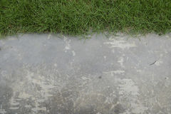 Πράσινη χλόη με το πάτωμα τσιμέντου Στοκ εικόνες με δικαίωμα ελεύθερης χρήσης