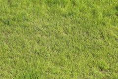 Πράσινη χλόη στο αγωνιστικό χώρο ποδοσφαίρου Στοκ Εικόνες