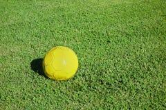 Πράσινη χλόη τομέων ποδοσφαίρου σφαιρών ποδοσφαίρου Στοκ Φωτογραφίες