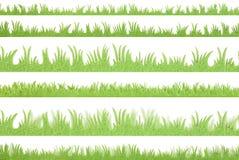 Πράσινη χλόη διανυσματική απεικόνιση