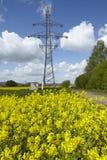 Πράσινη δύναμη - τομέας ελαίου κολζά και πύργος μετάδοσης Στοκ φωτογραφίες με δικαίωμα ελεύθερης χρήσης