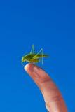 Πράσινη grasshopper συνεδρίαση σε ένα δάχτυλο Στοκ Εικόνες