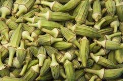 πράσινη okra συγκομιδών σύστα&si Στοκ φωτογραφία με δικαίωμα ελεύθερης χρήσης