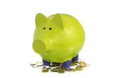 Πράσινη piggy τράπεζα που στέκεται στα νομίσματα στοκ εικόνες με δικαίωμα ελεύθερης χρήσης