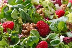 Πράσινη vegan σαλάτα με το σμέουρο και τα καρύδια Στοκ φωτογραφία με δικαίωμα ελεύθερης χρήσης