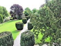 Πράσινοι δέντρα και οι Μπους στον κήπο κήποι Χάμιλτον Νέα Ζηλανδία κήπων σχεδίου Στοκ εικόνες με δικαίωμα ελεύθερης χρήσης