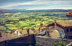 Πράσινοι αμπελώνες της Τοσκάνης στοκ φωτογραφίες με δικαίωμα ελεύθερης χρήσης