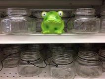 Πράσινοι βάτραχος και βάζα στοκ φωτογραφία με δικαίωμα ελεύθερης χρήσης