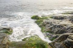 Πράσινοι βράχοι στην κυματωγή του ωκεανού Στοκ εικόνα με δικαίωμα ελεύθερης χρήσης