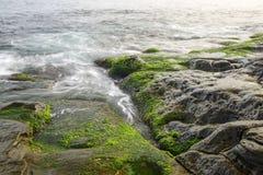 Πράσινοι βράχοι στην κυματωγή του ωκεανού Στοκ Φωτογραφίες