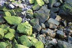 πράσινοι βράχοι στοκ φωτογραφία