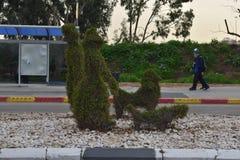 Πράσινοι θάμνοι με μορφή των ανθρώπων με ένα σκυλί και τους περαστικούς στη στάση λεωφορείου σε Herzelia, Ισραήλ - Στοκ Φωτογραφία