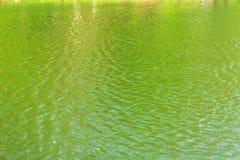 Πράσινοι κυματισμοί στην επιφάνεια του νερού στη λίμνη Στοκ φωτογραφίες με δικαίωμα ελεύθερης χρήσης