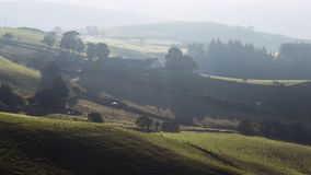 Πράσινοι λόφοι καλλιέργειας στη φθινοπωρινή υδρονέφωση πρωινού απόθεμα βίντεο