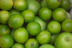 Πράσινοι μήλα και ασβέστες Στοκ φωτογραφία με δικαίωμα ελεύθερης χρήσης