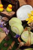 Πράσινοι ρόλοι κέικ που γεμίζουν με την καρύδα Στοκ Φωτογραφία