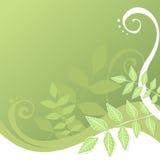 πράσινοι στρόβιλοι φύλλων απεικόνιση αποθεμάτων
