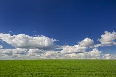 Πράσινοι τομέας και μπλε ουρανός χλόης με τα σύννεφα Ιδανικό υπόβαθρο στην έννοια της ΟΙΚΟΛΟΓΙΑΣ και της ΦΥΣΗΣ Στοκ φωτογραφίες με δικαίωμα ελεύθερης χρήσης