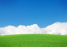 Πράσινοι τομέας και μπλε ουρανός χλόης με τα σύννεφα στον ορίζοντα Στοκ φωτογραφίες με δικαίωμα ελεύθερης χρήσης