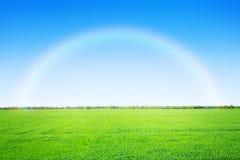 Πράσινοι τομέας και μπλε ουρανός χλόης με το ουράνιο τόξο Στοκ Φωτογραφίες
