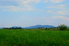 Πράσινοι τομέας και Carpathians Στοκ Εικόνες