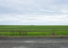 Πράσινοι τομείς και γκρίζος ουρανός Στοκ φωτογραφία με δικαίωμα ελεύθερης χρήσης