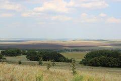 Πράσινοι τομείς και λιβάδια στοκ φωτογραφία