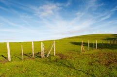 Πράσινοι τομείς και μπλε ουρανός χλόης. Crountryside Στοκ Φωτογραφία
