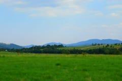 Πράσινοι τομείς στα βουνά της Ουκρανίας Στοκ εικόνες με δικαίωμα ελεύθερης χρήσης