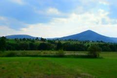 Πράσινοι τομείς στα ουκρανικά βουνά Στοκ Εικόνες