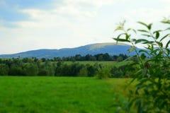 Πράσινοι τομείς Carpathians Στοκ εικόνες με δικαίωμα ελεύθερης χρήσης