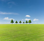 Πράσινοι χορτοτάπητας και μπλε ουρανός στοκ εικόνα με δικαίωμα ελεύθερης χρήσης