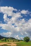 Πράσινοι χλόη και μπλε ουρανός βουνών Στοκ Εικόνες