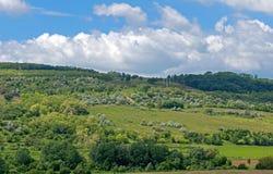 Πράσινοι λόφοι αρχών του καλοκαιριού, σύννεφα Στοκ Φωτογραφίες