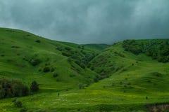 Πράσινοι λόφοι, δασικός και γκρίζος ουρανός Στοκ φωτογραφία με δικαίωμα ελεύθερης χρήσης