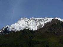 Πράσινοι λόφοι πριν από χιονώδες Annapurna IV αιχμή Himalayan Στοκ Φωτογραφία