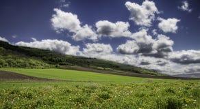 Πράσινοι λόφοι χλόης Στοκ φωτογραφία με δικαίωμα ελεύθερης χρήσης