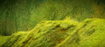 πράσινοι λόφοι Στοκ εικόνα με δικαίωμα ελεύθερης χρήσης