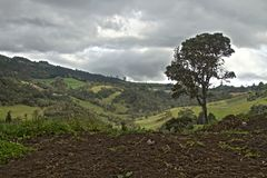 Πράσινοι Lanscape και ουρανός Στοκ εικόνες με δικαίωμα ελεύθερης χρήσης