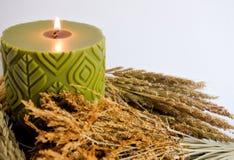 Πράσινοι scented κερί κεριών και μίσχος ρυζιού, χρυσό λουλούδι χλόης Στοκ εικόνα με δικαίωμα ελεύθερης χρήσης