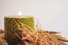 Πράσινοι scented κερί κεριών και μίσχος ρυζιού, χρυσό λουλούδι χλόης Στοκ Φωτογραφία