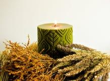Πράσινοι scented κερί κεριών και μίσχος ρυζιού, χρυσό λουλούδι χλόης Στοκ Εικόνα